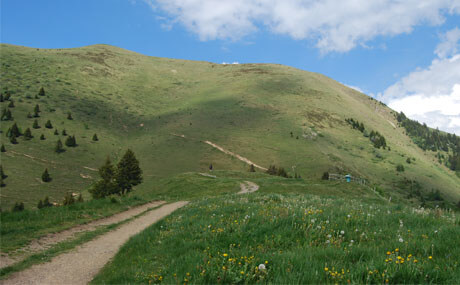 Règlement du trail